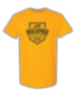 Promotional Tshirt.png