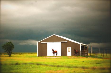 Lankas Labs Horse Barn