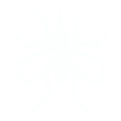 Mosquito Icon - white.png
