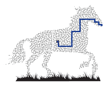 Horse Maze Animal.png
