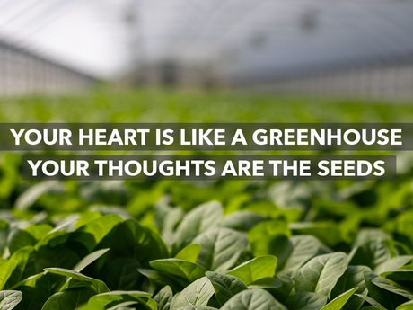 Your heart is like a greenhouse, our thoughts are the seeds, and your mind is the doorway to our gre
