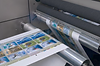 Stickers, tags, inserts, carcass tags, sheets, blank labels, thermal labels, thermal ribbons, nationwide print supplier