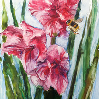 Gladiola With Bee