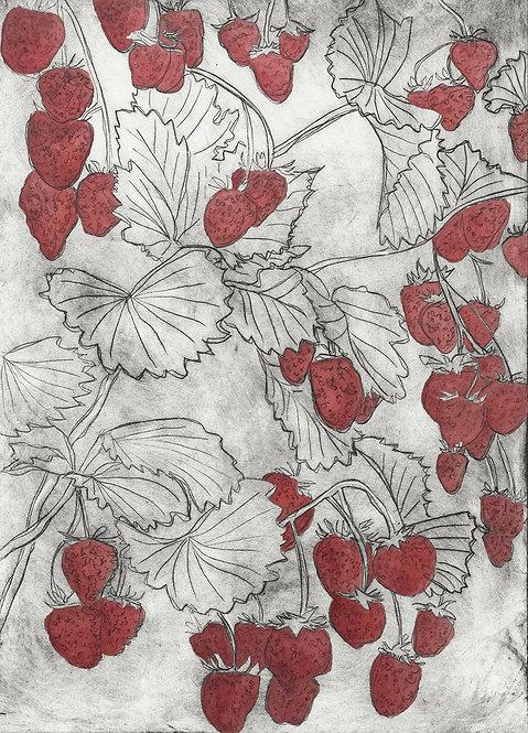 Strawberries 'Dark Red' - Drypoint