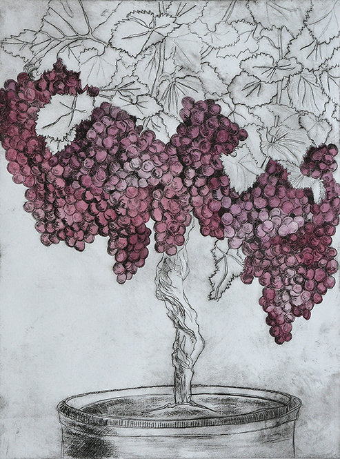 Grapes 'Wine' - Drypoint