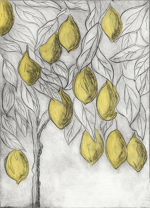 Lemons 'Bright Yellow' - Drypoint