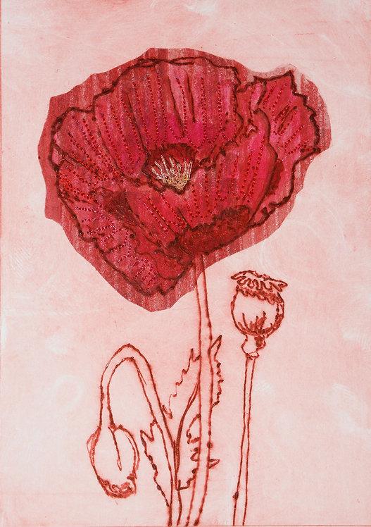 Poppy VII - Drypoint