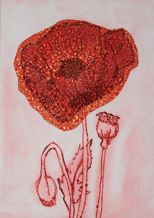 Poppy VI - Drypoint