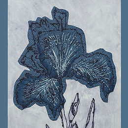 Latest Events and Exhibitions Featuring Artisan, Designer & Printmaker Tori McLean, Hampshire