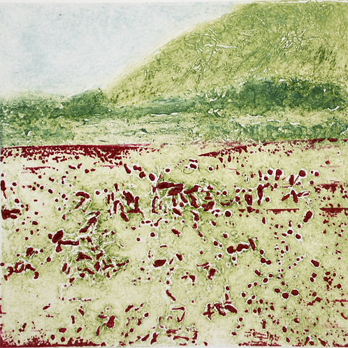 Spring Meadow II - Collagraph