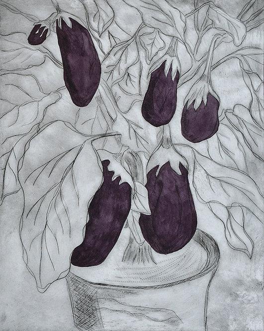 Aubergines 'Dark Purple' - Drypoint