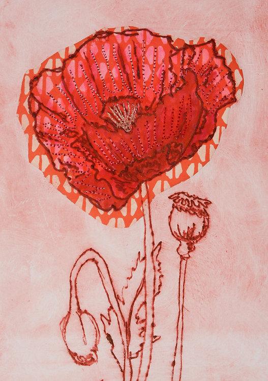 Poppy IV - Drypoint