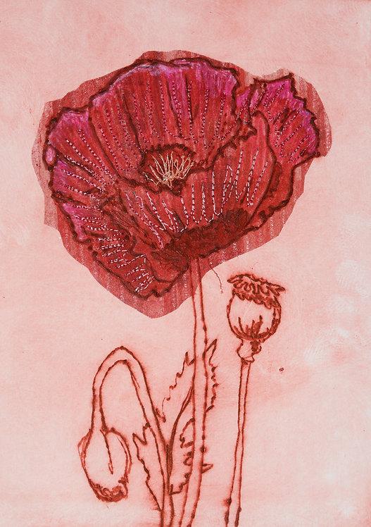 Poppy V - Drypoint