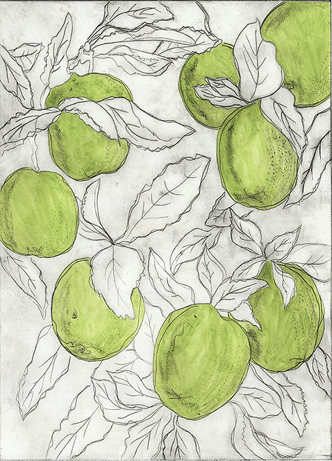 Apples 'Bright Green' - Drypoint