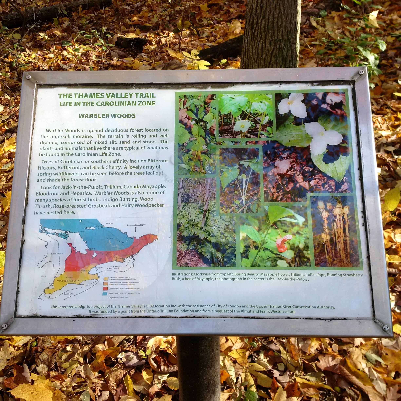 Warbler Woods Sign