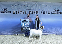 Goat Gr SBZ Ranch.jpg