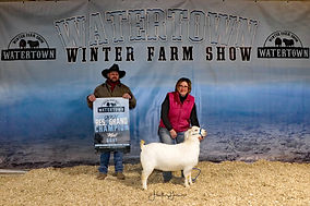 Meat Goat Reserve Champion - Heartland S