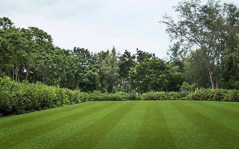 Lano Pro Lawn Multi Lane Artificial Grass