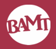 MAIN - BAMT.png