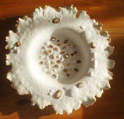Sea and shore bowl