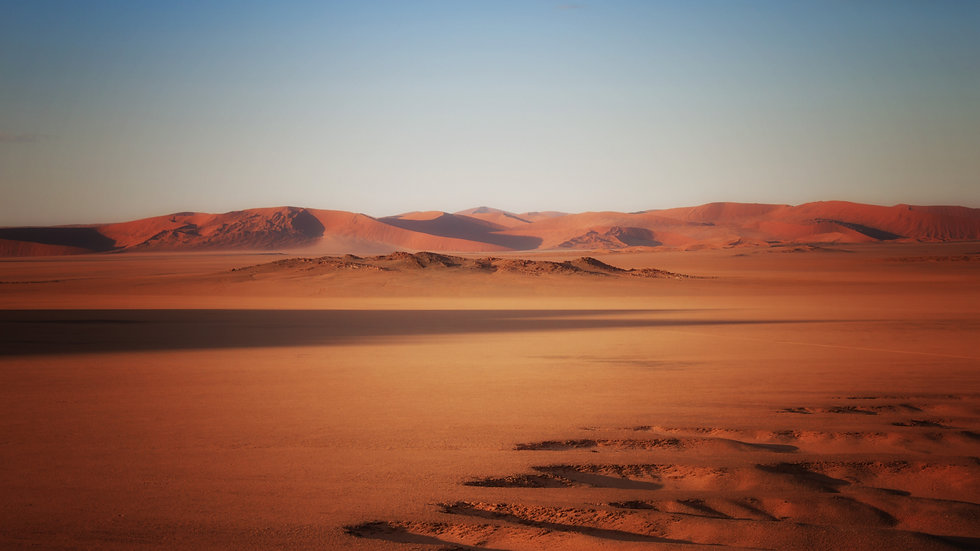 Desert Landscape At Dawn
