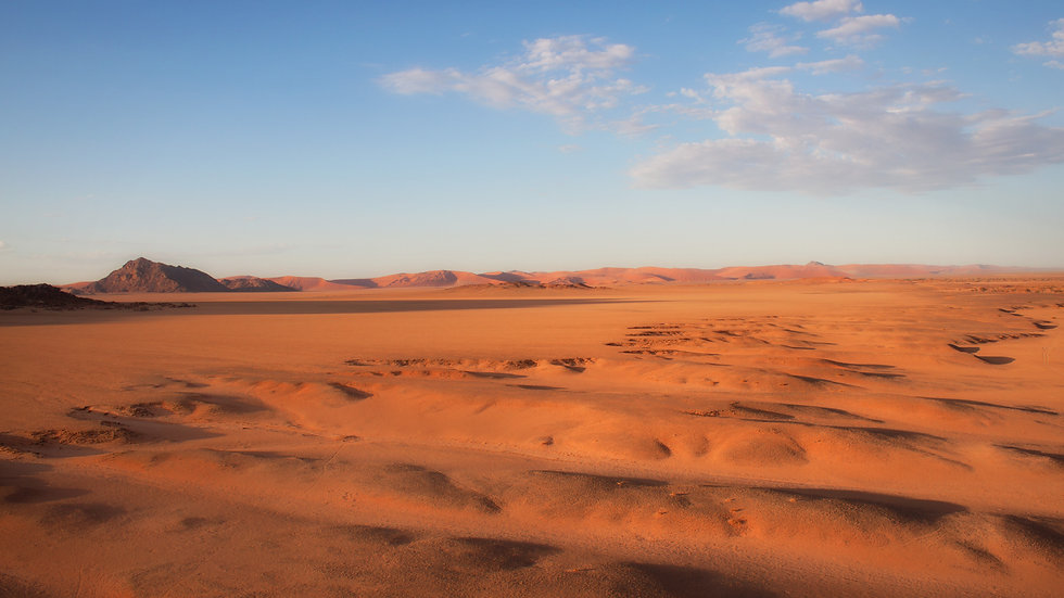 The Namib Desert At Dawn