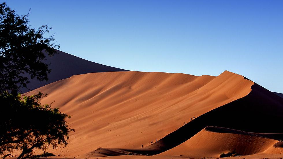 Namibia Sand Dune Series -  No 4