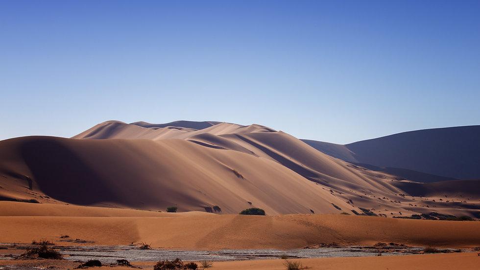 Namibia Sand Dune Series - No 5