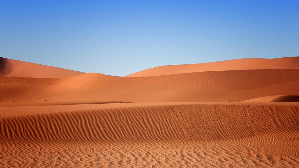 The Desert Wind