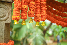 Marigold Decor