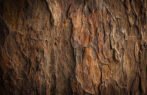 Materials_Mobler-03-01-2.JPG