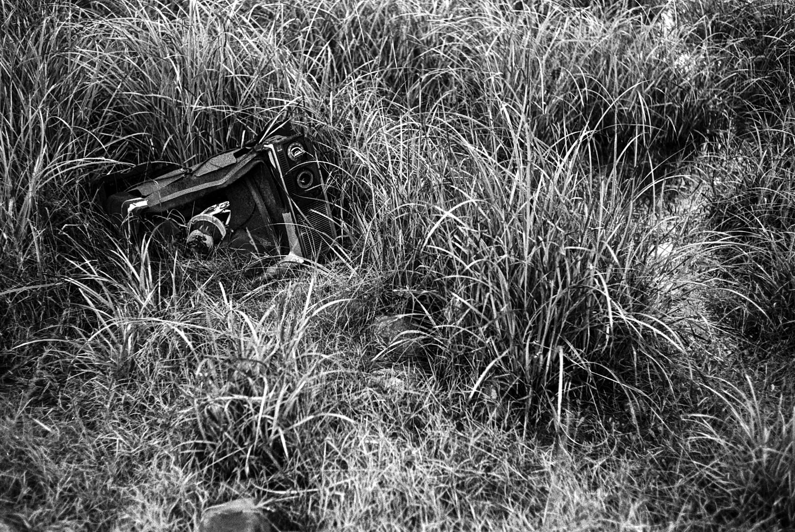 tv in the grasstif.jpg