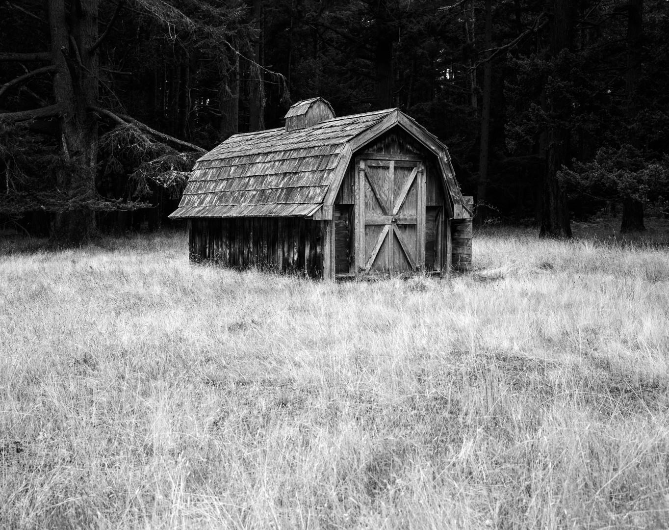 tumbo - little barn (final).jpg
