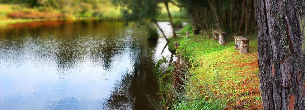 Lagoa para pescaria e relaxamento sob a