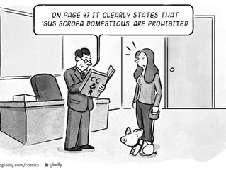 Should Owners Really Read The HOA CC&R?