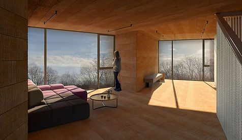Catskills Guest House modern interior living room
