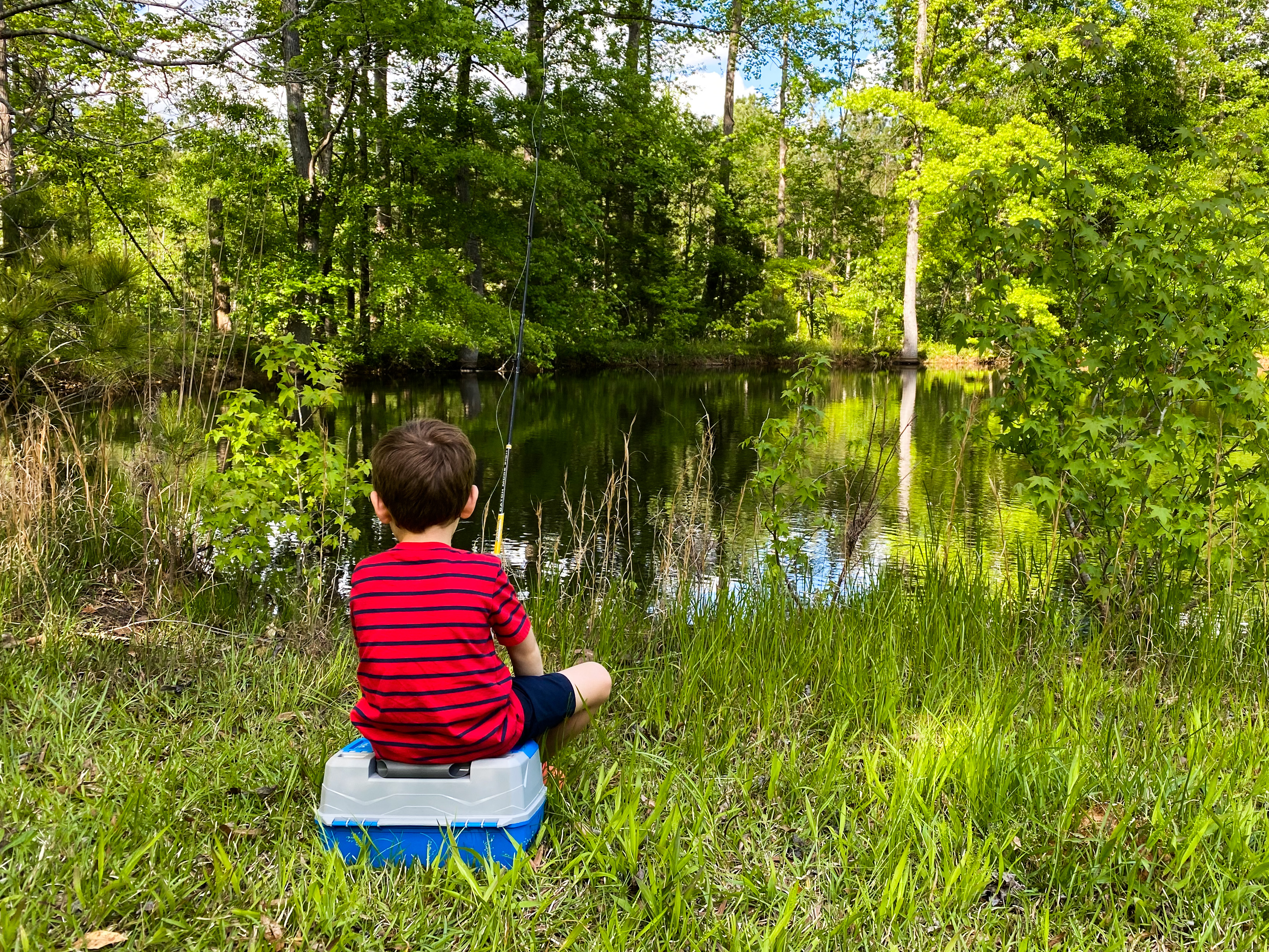 Pond Fishin'