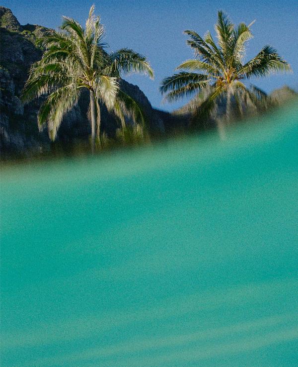 Screen Shot 2020-03-11 at 4.18.16 PM.png