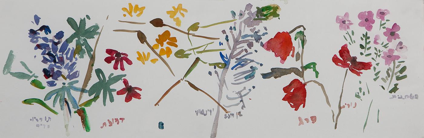 אינוונטר אביב-1, 2014, צבעי מים על נייר