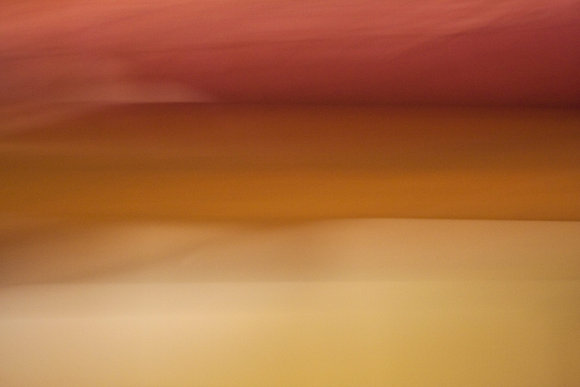ורוניק ענבר | Vish