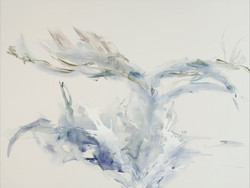 albatross 150x200 דורית טייכמן