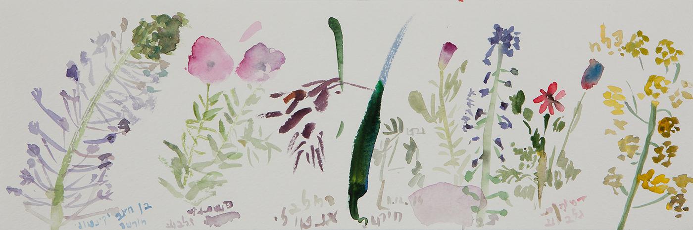 אינוונטר אביב-5, 2014, צבעי מים על נייר