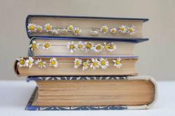 7 מורן שוב_סימניות קמומיל_מתוך סדרת סימניות בספרים (1) (1)
