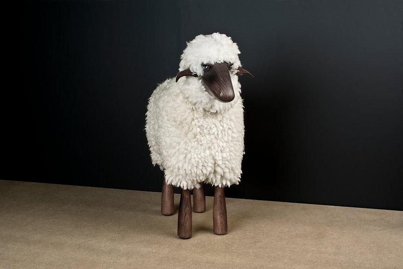 SHEEP / Hanns-Peter Krafft
