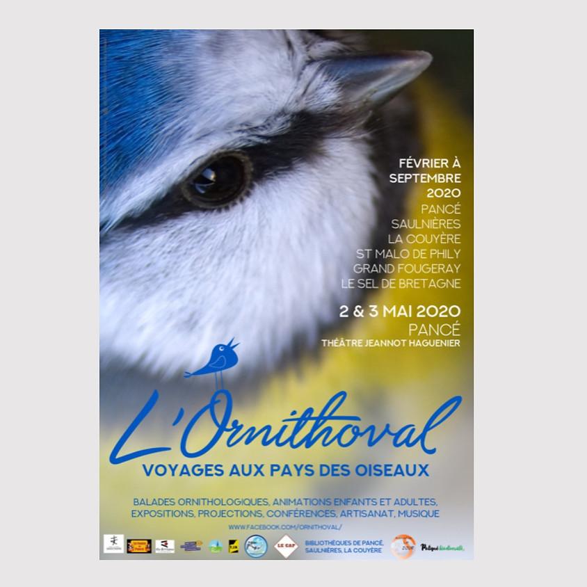 L'Ornithoval, voyages aux Pays des Oiseaux