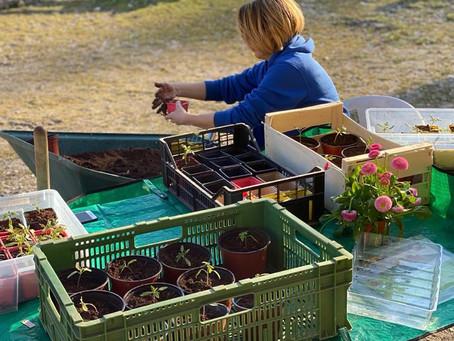 Création d'une micro-ferme permacole sur le site de l'ancienne colonie de vacances du Pré-Jeantet.