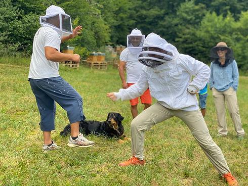 Baptème apicole - 2020