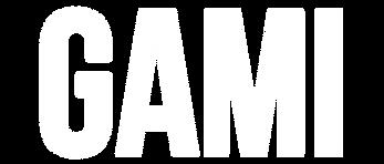 GAMI (2).png