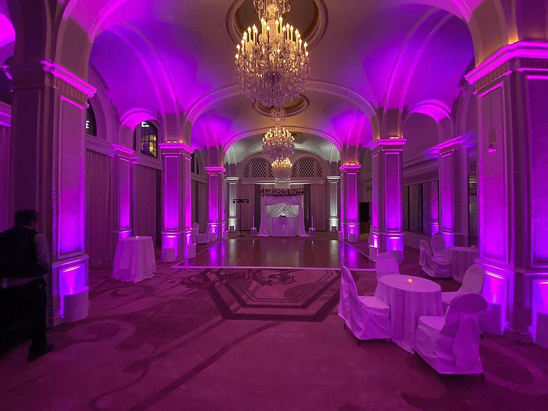omni purple whitesmall.jpg