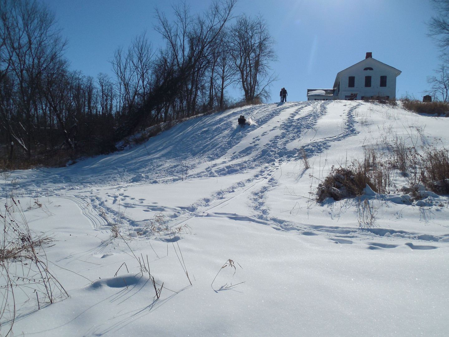 Sledding at Suicide Hill
